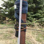 heightened mast